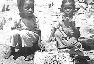 Bahamian children hold mature but still green tamarinds in hot ashes until they sizzle, then dip the tip in the ashes and eat them.