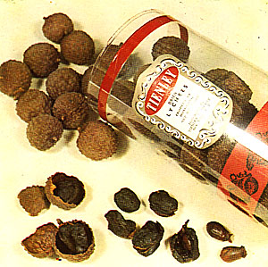 What Kind Of Nut Has A Hole >> Lychee